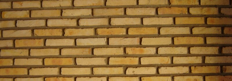 brick-wall-analogy-for-cells