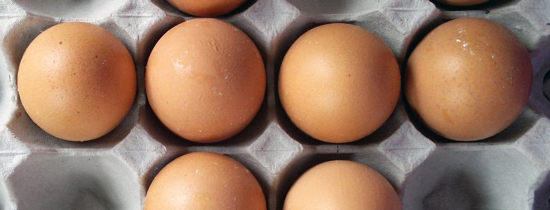 A picture of Eggs - High in protein